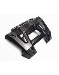 Agency Power Carbon Fiber Exhaust Shield Polaris RZR XP 1000 RS1 Turbo 14-18