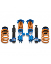ARK Performance Hyundai Veloster All Models DT-P Coilover (11-17)