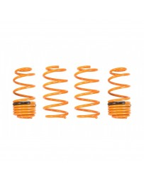 ARK Performance Honda CR-Z (11-16) | 1.5L GT-F Lowering Springs