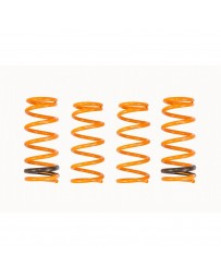ARK Performance Honda S2000 (00-09) 2.0L/2.2L GT-F Lowering Springs