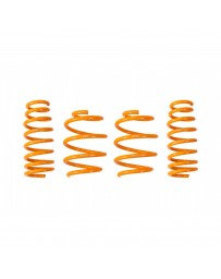ARK Performance Hyundai Genesis Coupe 2.0T/3.8L GT-F Lowering Springs (10-16)