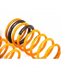 ARK Performance Kia Forte Koup / Hatchback / Sedan GT-F Lowering Springs (10-13)