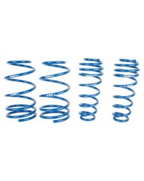 ROUSH Performance Mustang Lowering Springs (2005-2014)